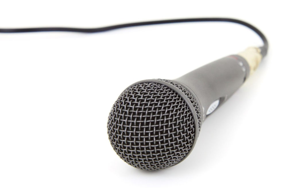 microphone , voice recording, Google Bert