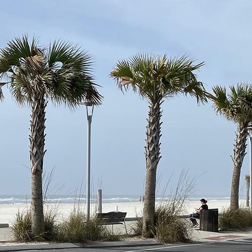 SEO in Gulf Shores AL